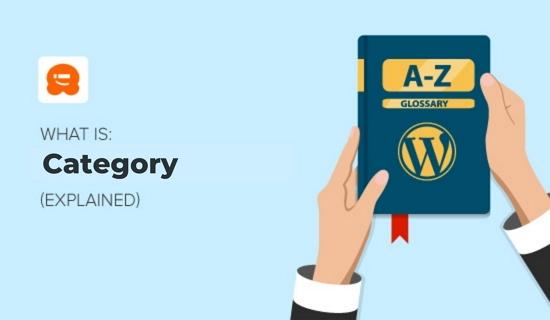 WordPress文章分类