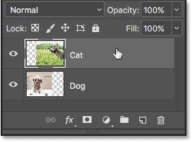 如何在 Photoshop 中使用图层蒙版